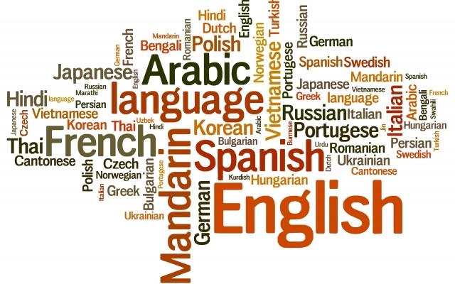 تایپ سریع متون pdf،کتاب، در زبان های فارسی و لاتین انجام بدم.
