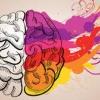 dr.brain