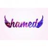 Hamed_z7