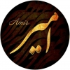 amir133kianina-53