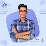 MohammadHosseinM